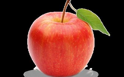 Producteurs de pommes Fuji
