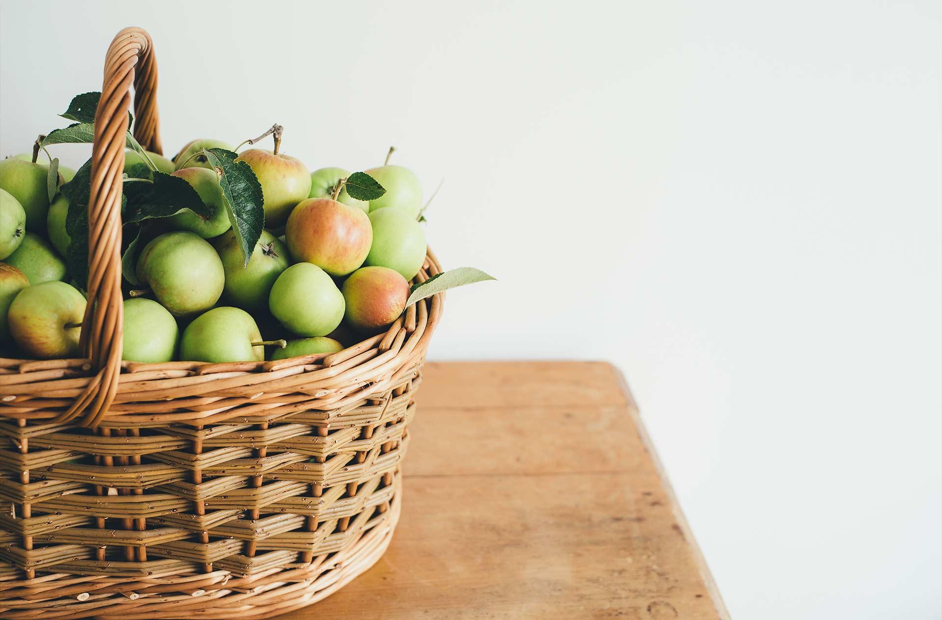 Les producteurs de Fruit de Felpi
