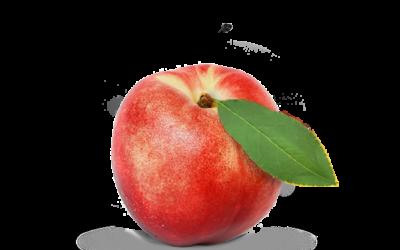 Producteurs de nectarine